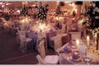 Excellent Table Linens Chair Covers For Rent Linen Rentals In Houston Pabps2019 Chair Design Images Pabps2019Com